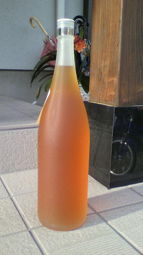 今年の梅酒